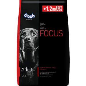 Drools Focus Adult Premium