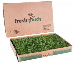 Fresh Patch