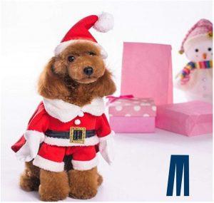 Mikayoo Christmas Costume