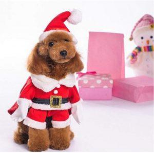 Nacoco Santa Claus Suit