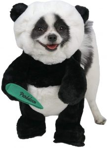 Pandaloon Panda