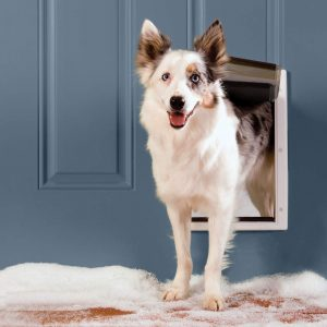 PetSafe Extreme Weather Door