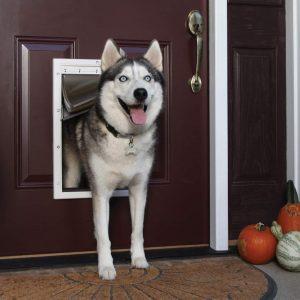 PetSafe Weather Door