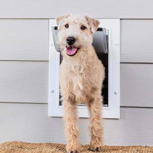 PetSafe New Wall Entry Door