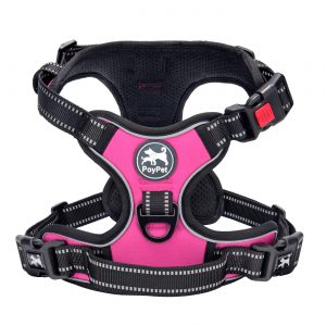 Poy Pet Harness