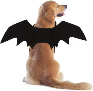 RYPET Bat Costume