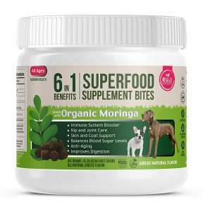Superfood Dog Treats