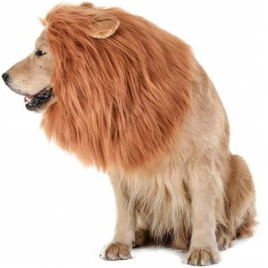 Tomsenn Lion Wig Best Dog Costume